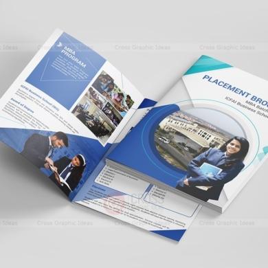 IBS-Placement-Brochure11